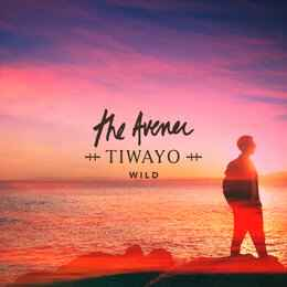 The Avener & Tiwayo - Wild